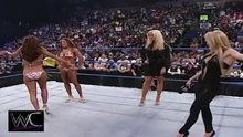 Torrie Wilson and Sable's super intricate WWE plot